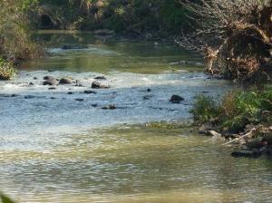 Umzinduzi River